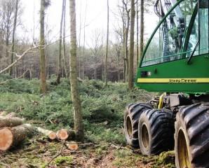Begeleiden boswerk